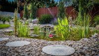 Natursteinarbeiten Gartenteich
