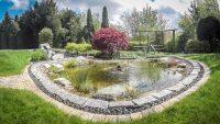 Wasser Teich Gartenanlage Springbrunnen