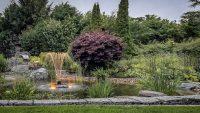 Natursteinarbeiten Gartenteich Springbrunnen Beleuchtung Abendstimmung